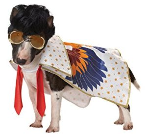 elvis dog costume halloween