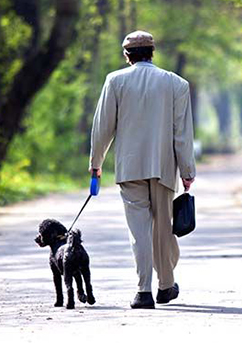 old-man-with-senior-dog