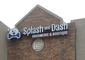 Splash and Dash Dog Grooming Coppell TX