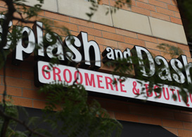 Splash and Dash Baton Rouge Dog Grooming