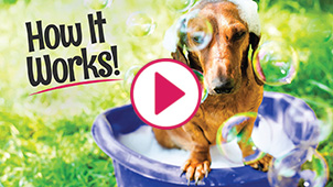 Splash and dash groomerie boutique dog grooming coppell tx learn more by clicking below solutioingenieria Gallery
